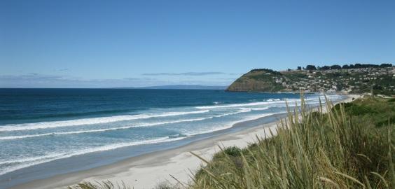beach554